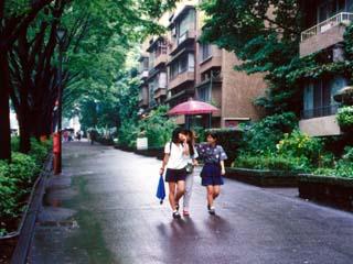aoyama_19910620-1.jpg