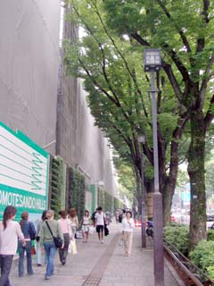 aoyama_20050603-5.jpg
