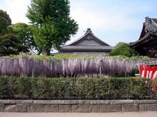 ashikaga_20070503-2.jpg