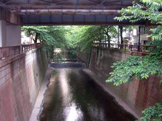daikanyama_20080517-1.jpg