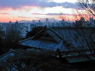daikanyama_990204-1.jpg
