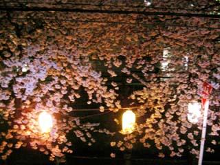 ichikawa_20060402-2.jpg