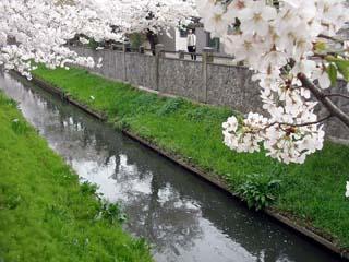 ichikawa_20070401-1.jpg