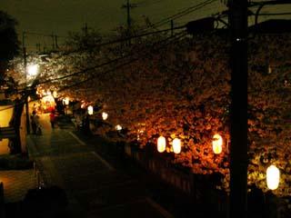 ichikawa_20070401-2.jpg