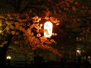 ichikawa_20070401-3.jpg