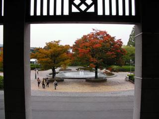 kyoto_20081103-5.jpg