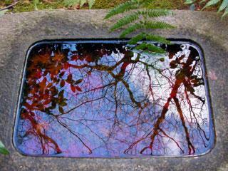 kyoto_20090111-2.jpg