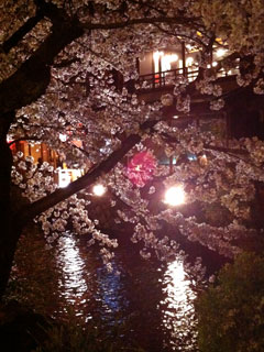 kyoto_20110407-08.jpg