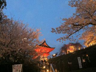 kyoto_20130331-11.jpg