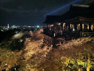 kyoto_20130331-12.jpg
