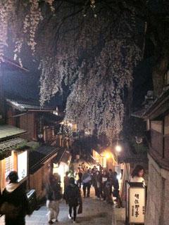 kyoto_20130331-13.jpg