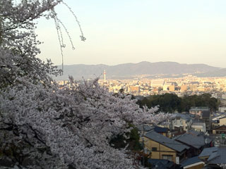 kyoto_20130401-01.jpg