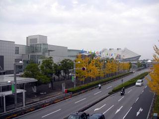 makuhari_20081117-1.jpg