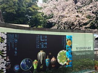 meguro_20170409-01.jpg