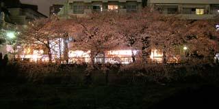nakameguro_20070402-1.jpg