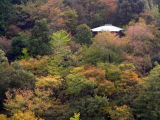 okazaki_20081102-3.jpg
