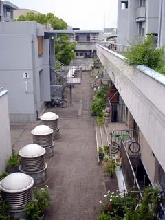 sakaide_040515-4.jpg