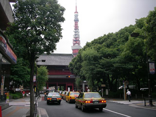 shiba_20070625-1.jpg