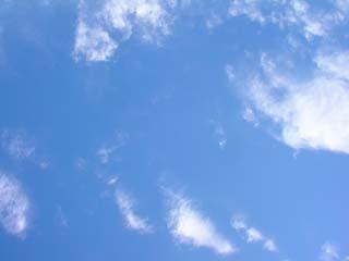 shinjyuku_20070330-4.jpg