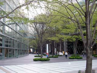 tokyo_20050407-6.jpg