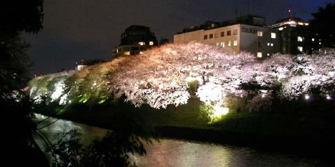 tokyo_20060330-1.jpg