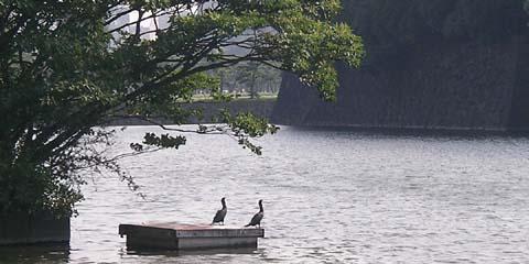 tokyo_20060803-1.jpg