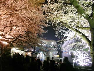 tokyo_20070329-2.jpg