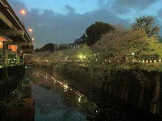 tokyo_20130328-01.jpg