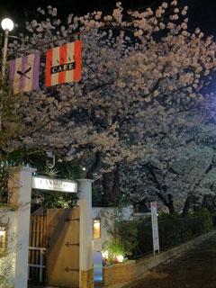 tokyo_20130328-02.jpg