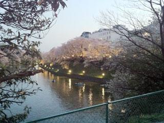 tokyo_20140405-01.jpg
