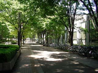 tsukuba_20050503-4.jpg