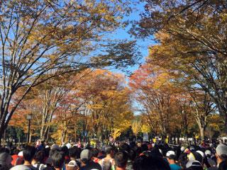 tsukuba_20141123-01.jpg