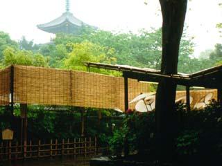 ueno_19910429-1.jpg