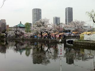ueno_20130323-03.jpg