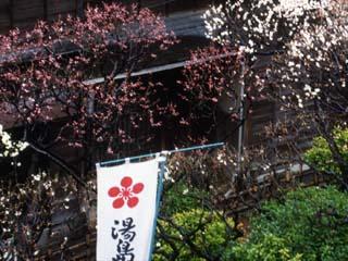 yushima_19910305-1.jpg